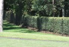 Abbotsford NSW Chainlink fencing 10