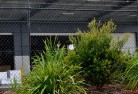 Abbotsford NSW Chainlink fencing 13
