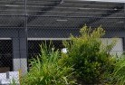 Abbotsford NSW Wire fencing 20